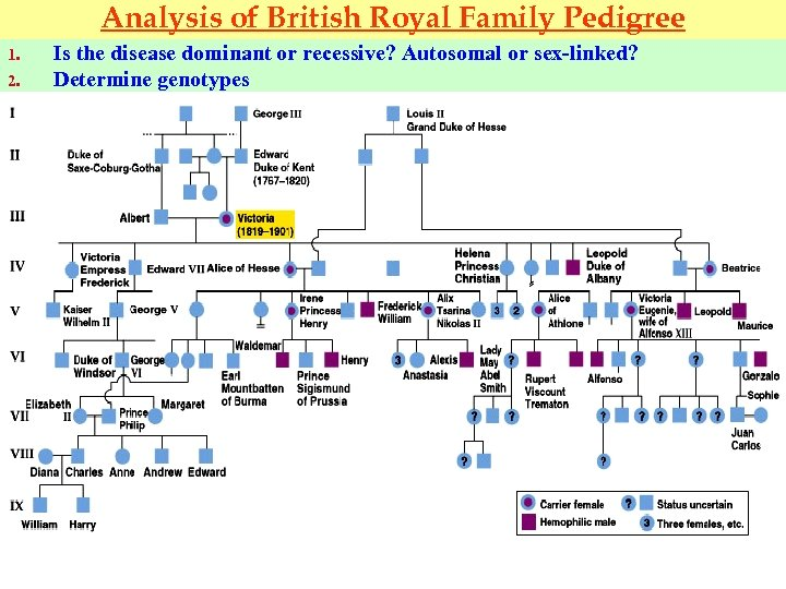 Analysis of British Royal Family Pedigree 1. 2. Is the disease dominant or recessive?