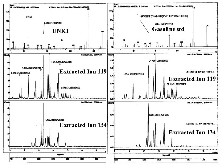 UNK 1 Gasoline std Extracted Ion 119 Extracted Ion 134