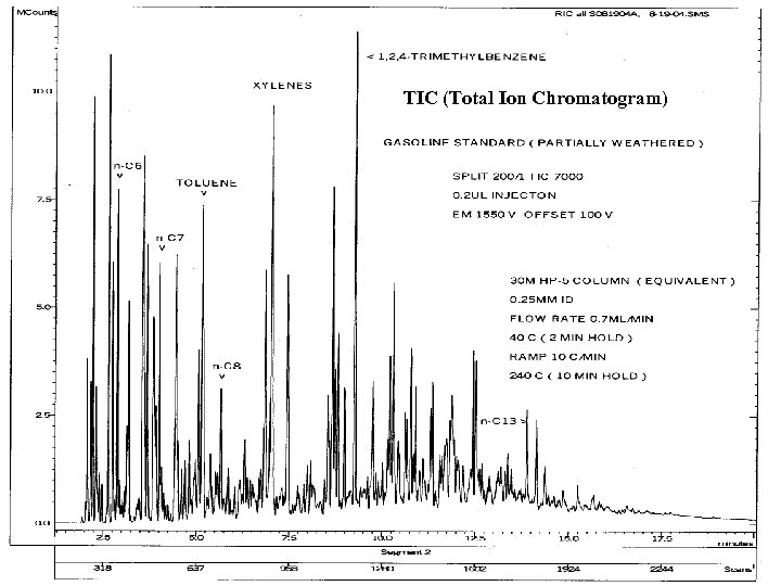 TIC (Total Ion Chromatogram)