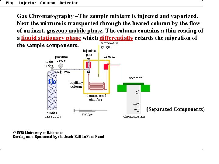 Gas Chromatography –The sample mixture is injected and vaporized. Next the mixture is transported