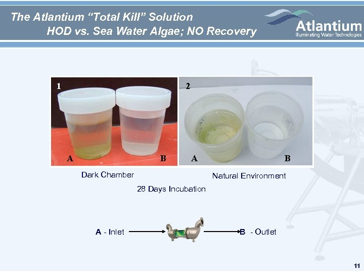 "The Atlantium ""Total Kill"" Solution HOD vs. Sea Water Algae; NO Recovery Dark Chamber"