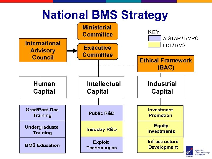 National BMS Strategy Ministerial Committee International Advisory Council Human Capital Executive Committee Intellectual Capital