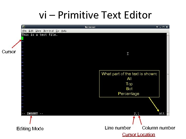 vi – Primitive Text Editor Cursor What part of the text is shown: All