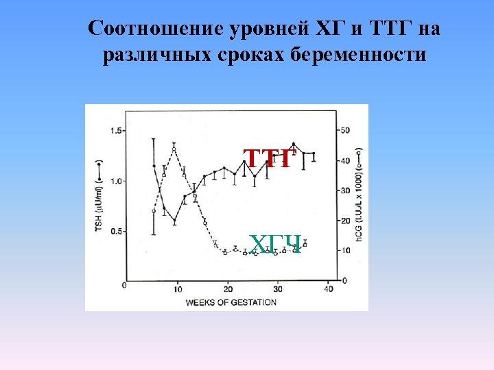 Соотношение уровней ХГ и ТТГ на различных сроках беременности ТТГ ХГЧ