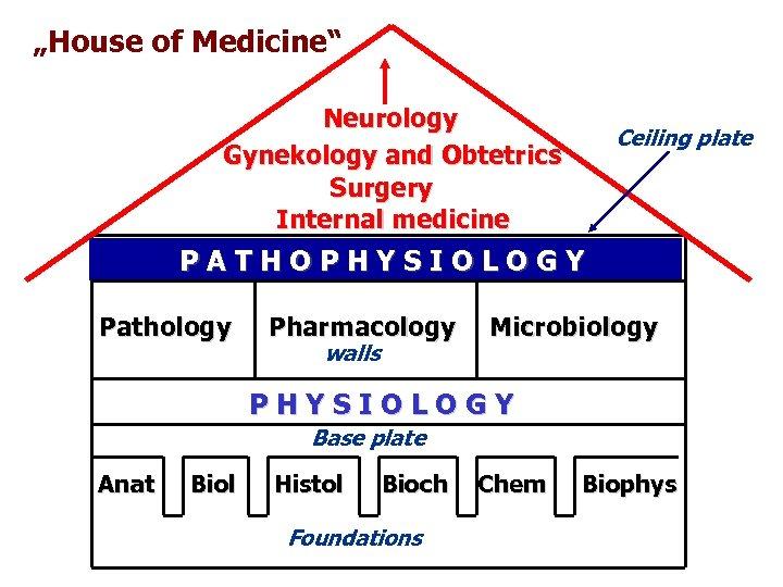 """House of Medicine"" Neurology Gynekology and Obtetrics Surgery Internal medicine Ceiling plate PATHOPHYSIOLOGY Pathology"