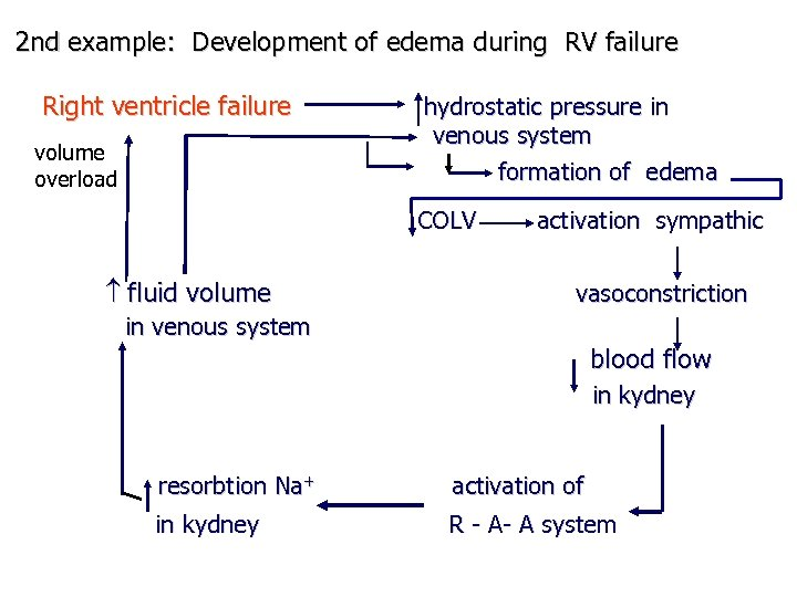 2 nd example: Development of edema during RV failure Right ventricle failure volume overload