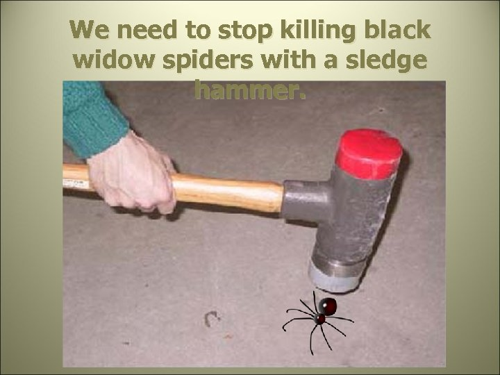 We need to stop killing black widow spiders with a sledge hammer.
