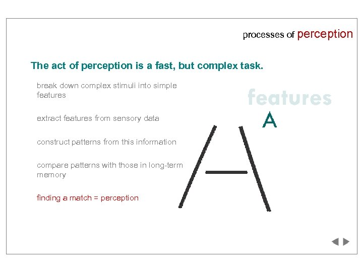 processes of perception The act of perception is a fast, but complex task. break