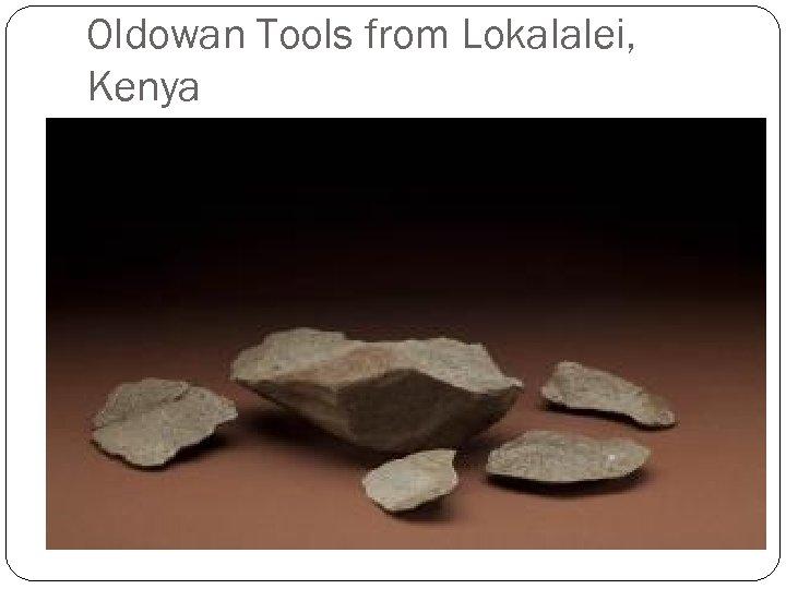 Oldowan Tools from Lokalalei, Kenya