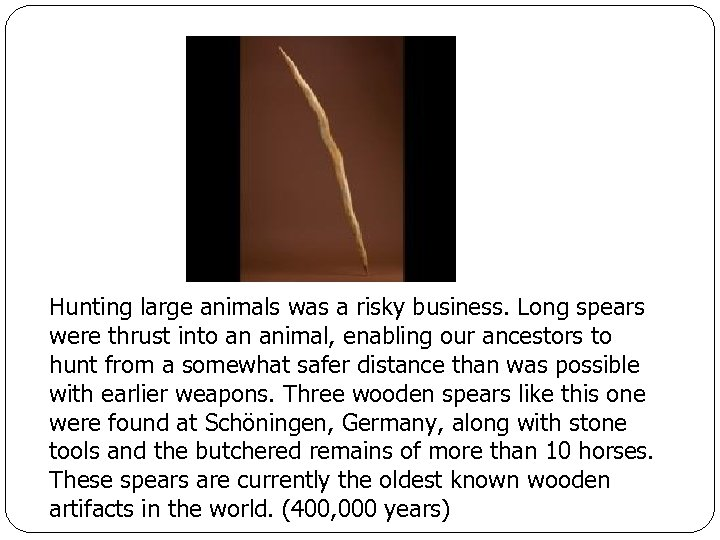 Hunting large animals was a risky business. Long spears were thrust into an animal,