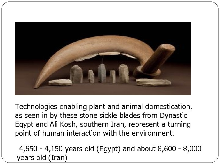 Technologies enabling plant and animal domestication, as seen in by these stone sickle blades