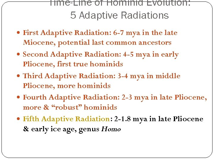 Time-Line of Hominid Evolution: 5 Adaptive Radiations First Adaptive Radiation: 6 -7 mya in