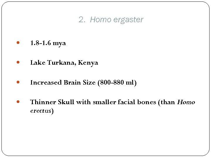 2. Homo ergaster 1. 8 -1. 6 mya Lake Turkana, Kenya Increased Brain Size