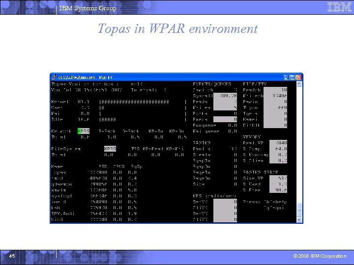 IBM Systems Group Topas in WPAR environment 45 © 2008 IBM Corporation