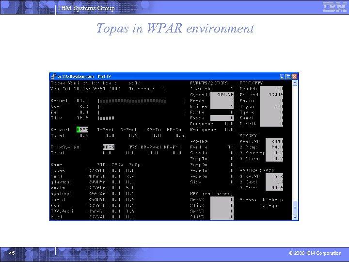 IBM Systems Group Topas in WPAR environment 45 © 2008 IBM Corporation