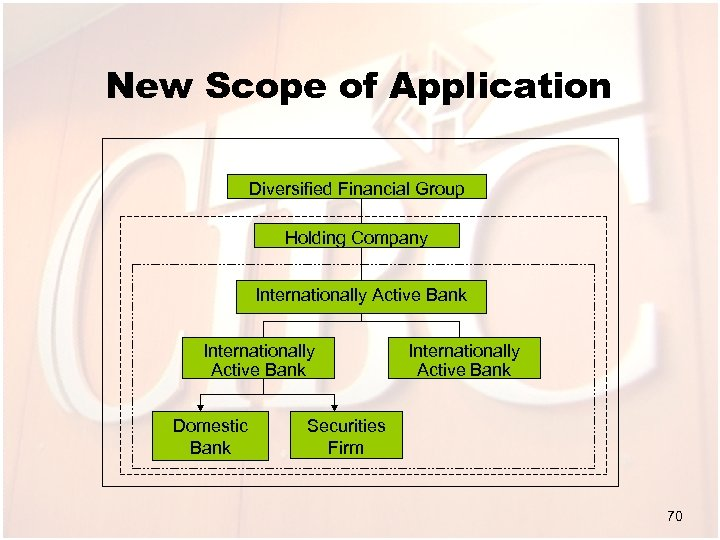 New Scope of Application Diversified Financial Group Holding Company Internationally Active Bank Domestic Bank