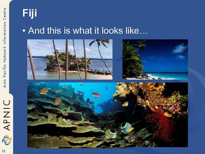 Fiji • And this is what it looks like… 13