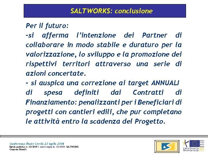 SALTWORKS: conclusione Per il futuro: -si afferma l'intenzione dei Partner di collaborare in modo