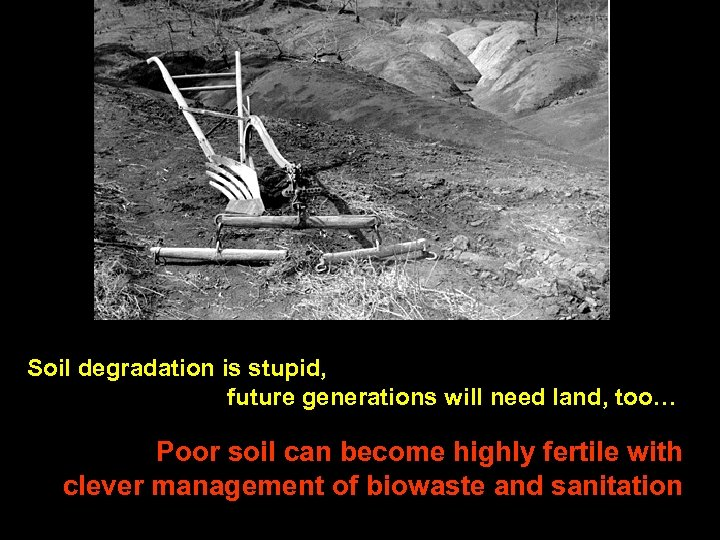 Soil degradation is stupid, future generations will need land, too… Poor soil can become
