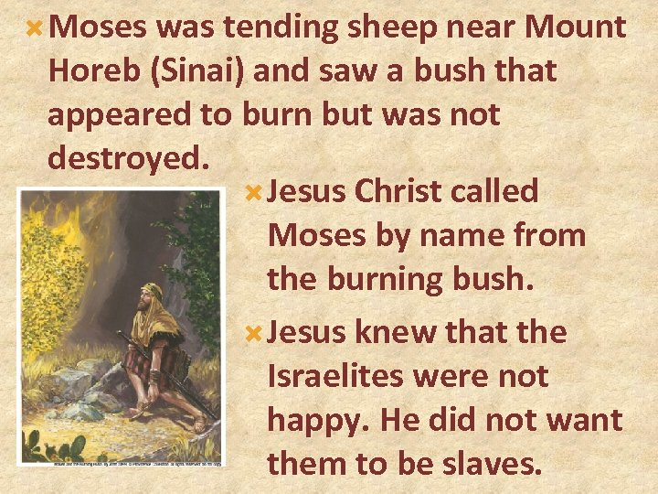 Moses was tending sheep near Mount Horeb (Sinai) and saw a bush that