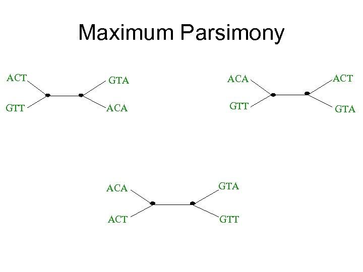 Maximum Parsimony ACT GTA ACT GTT ACA GTT GTA ACA GTA ACT GTT
