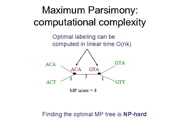 Maximum Parsimony: computational complexity Optimal labeling can be computed in linear time O(nk) ACA