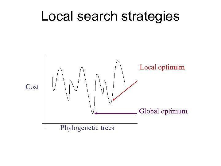 Local search strategies Local optimum Cost Global optimum Phylogenetic trees