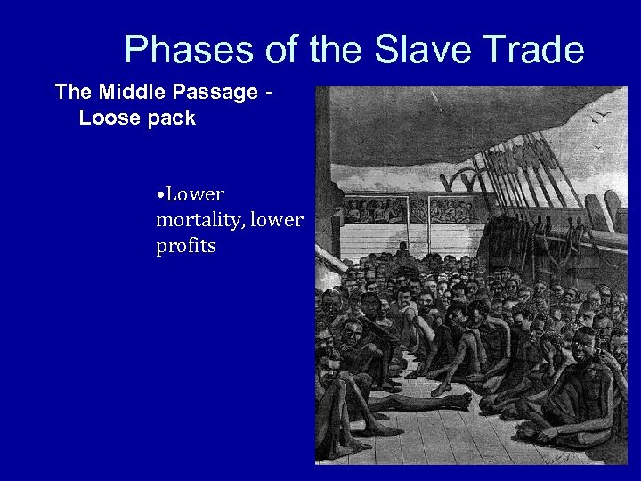 Phases of the Slave Trade The Middle Passage Loose pack • Lower mortality, lower