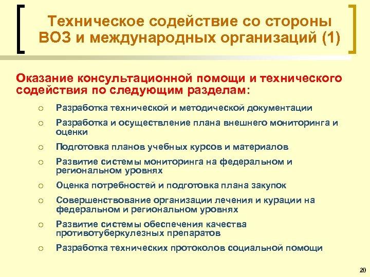 Техническое содействие со стороны ВОЗ и международных организаций (1) Оказание консультационной помощи и технического