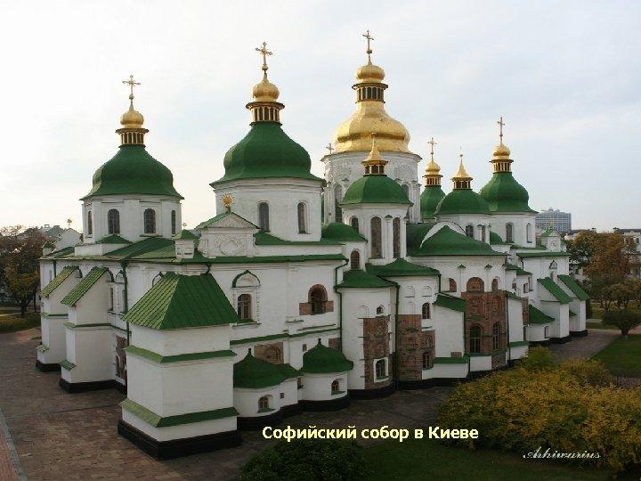 Софийский собор в Новгороде Софийский собор в Киеве