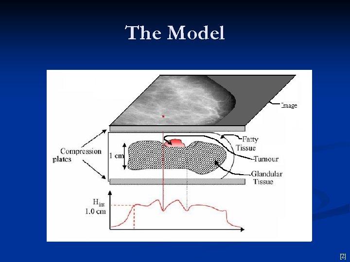The Model [2]