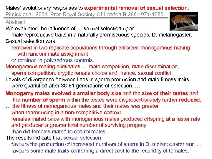 Males' evolutionary responses to experimental removal of sexual selection. Pitnick et al. 2001. Proc