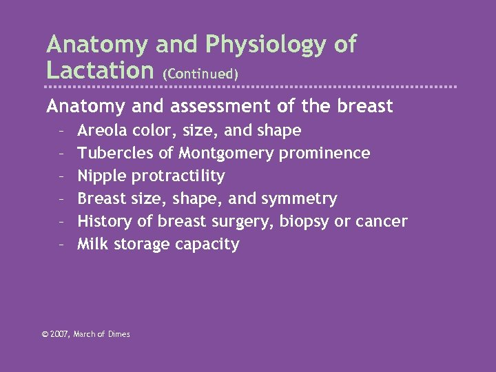 Anatomy and Physiology of Lactation (Continued) Anatomy and assessment of the breast – –
