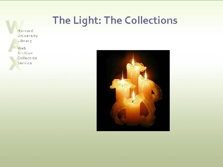 The Light: The Collections