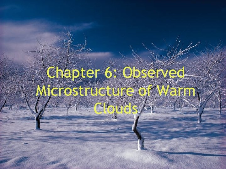Chapter 6: Observed Microstructure of Warm Clouds
