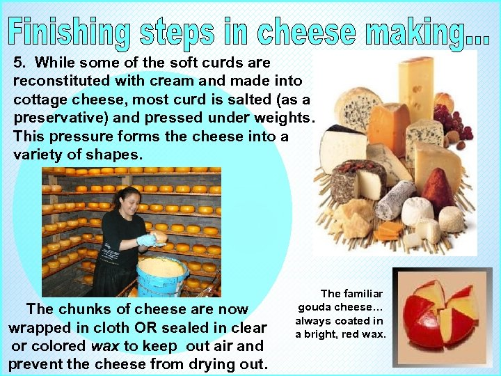 5. While some of the soft curds are reconstituted with cream and made into