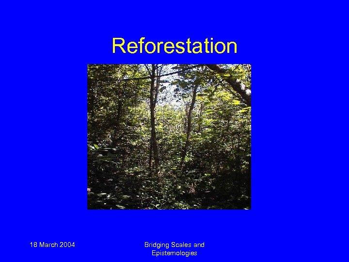 Reforestation 18 March 2004 Bridging Scales and Epistemologies