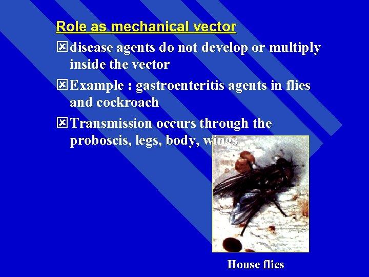 medical entomology subjects 1 medical entomology introduction  present5.com