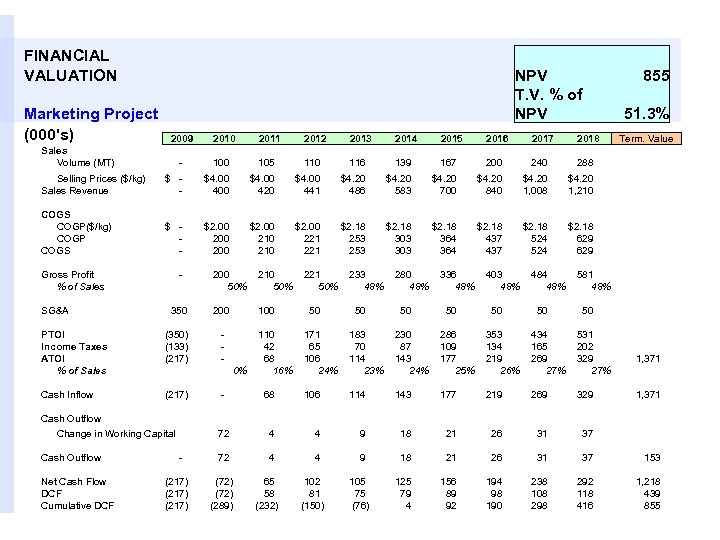 FINANCIAL VALUATION Marketing Project (000's) NPV T. V. % of NPV 2009 2010 2011