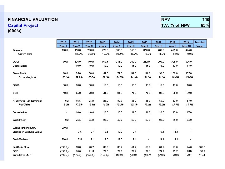 FINANCIAL VALUATION Capital Project (000's) NPV T. V. % of NPV 119 83% 2010