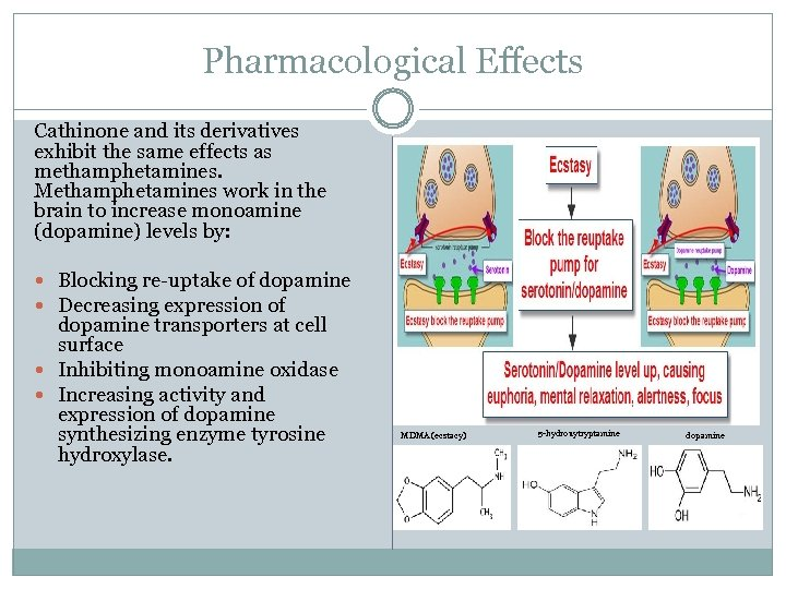 Pharmacological Effects Cathinone and its derivatives exhibit the same effects as methamphetamines. Methamphetamines work