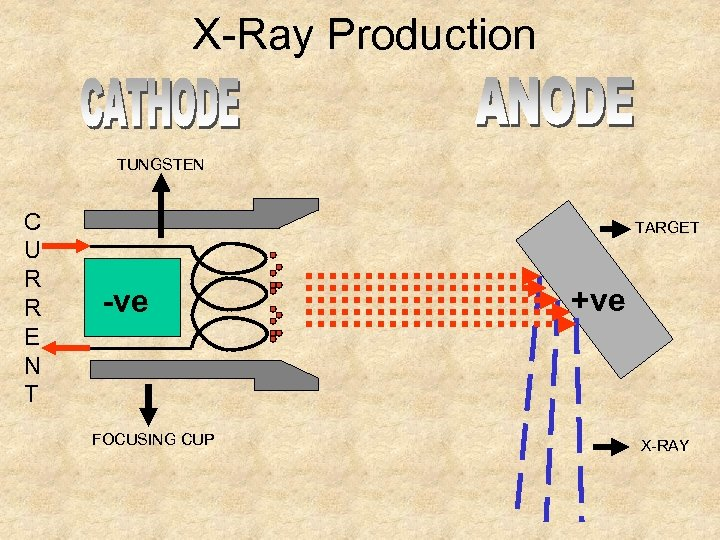 X-Ray Production TUNGSTEN C U R R E N T TARGET -ve FOCUSING CUP