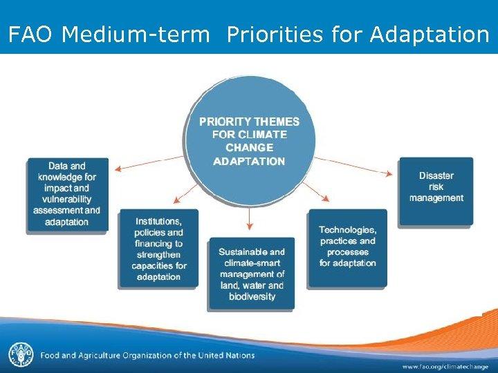FAO Medium-term Priorities for Adaptation