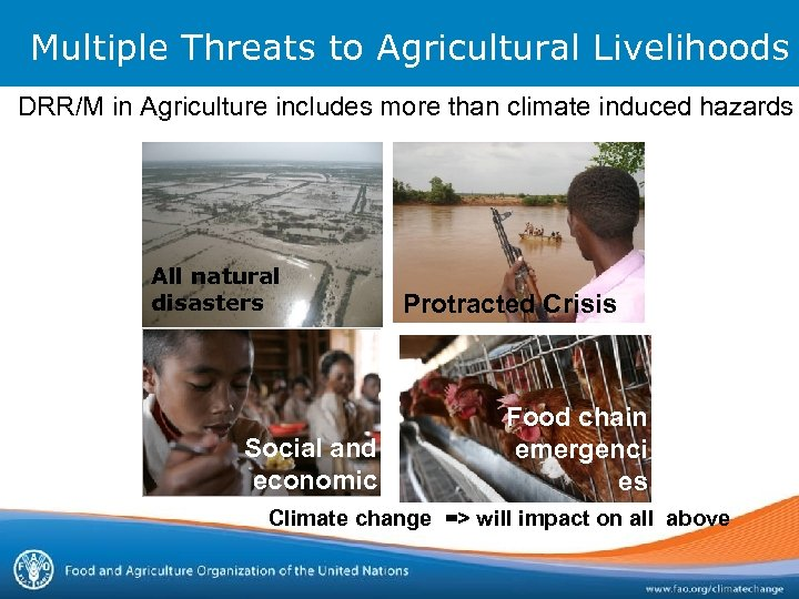 Multiple Threats to Agricultural Livelihoods DRR/M in Agriculture includes more than climate induced hazards