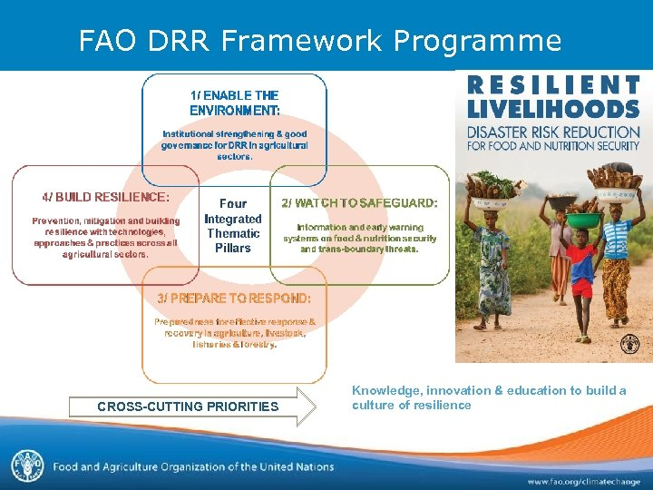 FAO DRR Framework Programme CROSS-CUTTING PRIORITIES Knowledge, innovation & education to build a culture