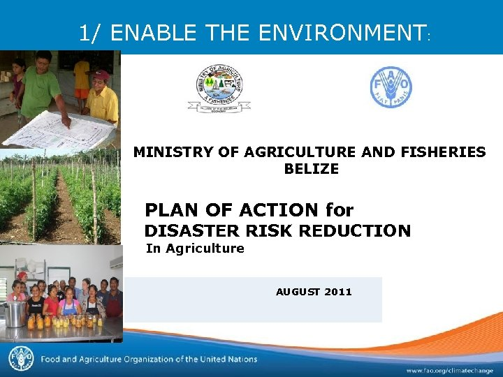 1/ ENABLE THE ENVIRONMENT: MINISTRY OF AGRICULTURE AND FISHERIES BELIZE PLAN OF ACTION for