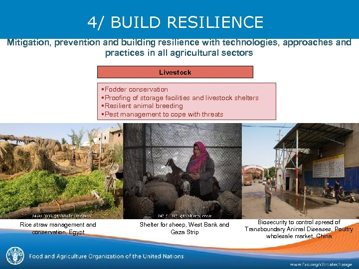 4/ BUILD RESILIENCE . Mitigation, prevention and building resilience with technologies, approaches and practices