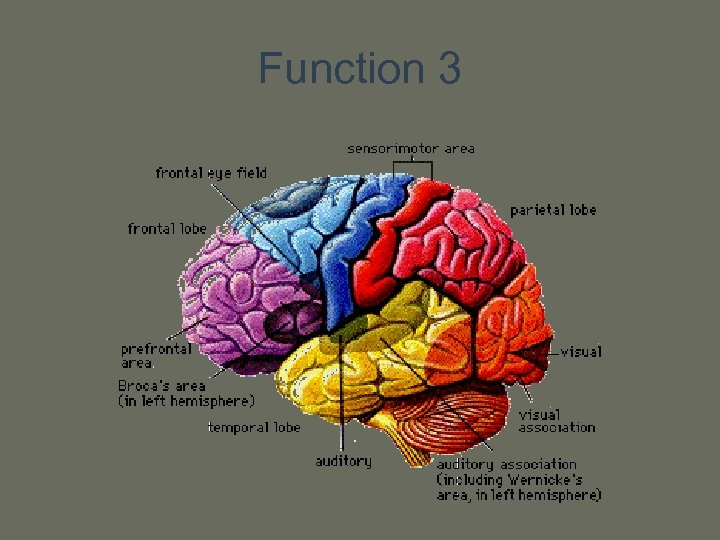 Function 3