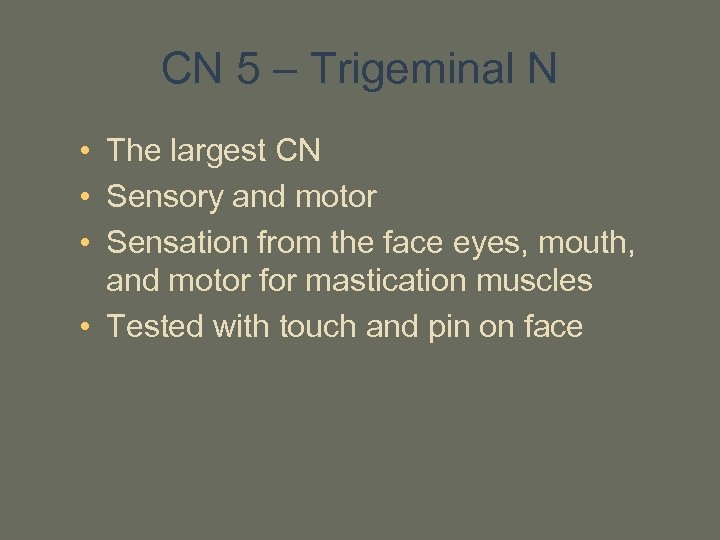 CN 5 – Trigeminal N • The largest CN • Sensory and motor •