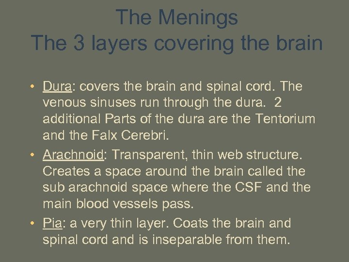 The Menings The 3 layers covering the brain • Dura: covers the brain and